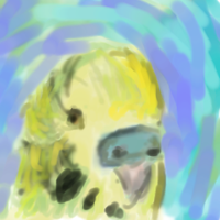 Green and Yellow Budgie by sanjouin-dacapo