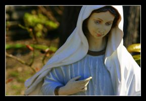 Mother Mary comes to me by danypope
