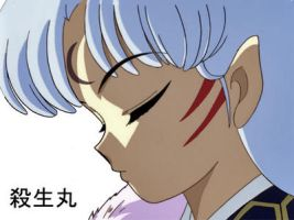 .:Sesshomaru:. by Suuki162006