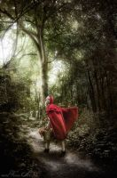 Little Red Riding Hood by viona