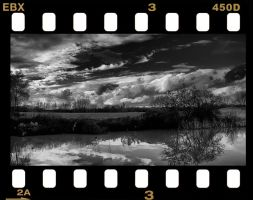 Water, Land and Sky by neoweb