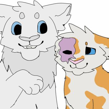 Cloudtail and Brightheart by merlybirds