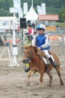 Chestnut Shetland - Show jumping stock 7.8 by MagicLecktra