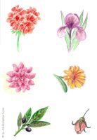 Flowers and plants -sketches- by lu--24