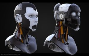 Cyborg Female Render by lancewilkinson