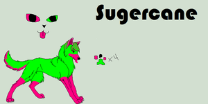 Sugercane the Wolf by UnTaMeD-rOsE