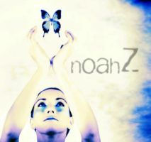 no by noahz
