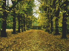 autunno II by s0n-et-lumiere