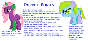 Puppet Ponies Reference Sheet by Pumpkinburst