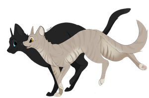 Crowfeather and Leafpool by KZcat
