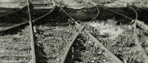 Tracks Here And There by Maxibouy1