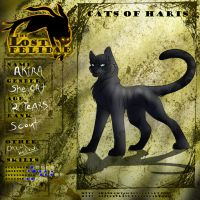 TFL - Akira a Scout of Haris ref by MoonTiger456