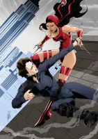 Commission: Maria Hill x Elektra by redgvicente