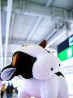 Cow's Story 01 by reiling-lina