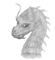 Saphira by JackXAngelicaforever