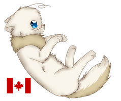 Canada Cat by goatguts