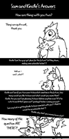 Q and A 3:  Sam and Kindle by DragonwolfRooke