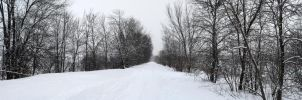 It's snowing panorama by LucieG-Stock