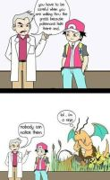 Pokemon logic by ShibbuSama