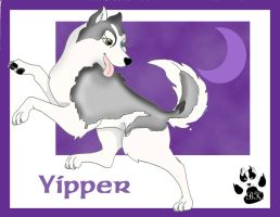 Team HuskyPaws Yipper by Husky-Leader