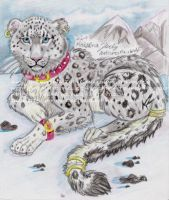 snow leopard by NatsumeWolf