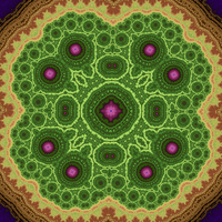 Aztec Broccoli - Buffalo Fractal by stardust4ever