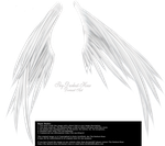 Wings of Madness - White by Thy-Darkest-Hour