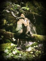 Forest Fae by alana-m