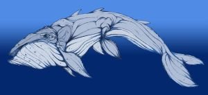 """The Behemoth Whale """"colored"""" by QuintinRWhite"""
