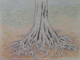 Tree Roots Color by ogwynne