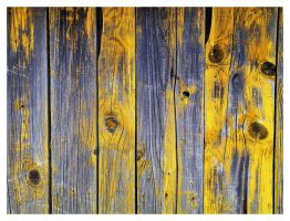Old fence by Justysiak