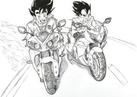 Goku racing with Vegeta !! by bloodsplach
