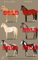 Horse Adopts Batch (CLOSED) by KittycatNita