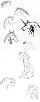 Horse sketches by sunbeamattack