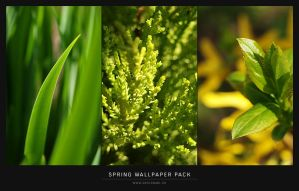 Spring wallpapers by mareklevak