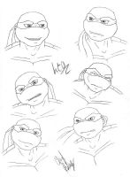 TMNT: Leo's new head by dymira128
