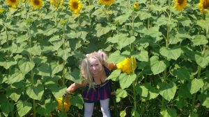 Juliet Starling: Sunflowers by Smery