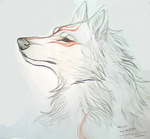 Amaterasu by TheMysticWolf