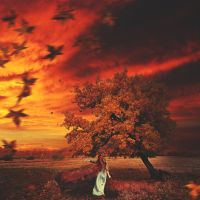 Autumn wind by losesprit