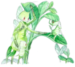 A for Aphid by Mitsuyuki32
