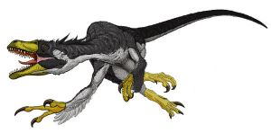Dromaeosaurus Detail I by Art-Minion-Andrew0