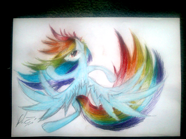 1 hour MLP: Rainbow Dash by nothing111111