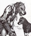 Lupin e Sirius wolves by FuriarossaAndMimma