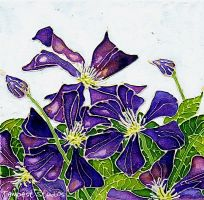 Purple Clematis by TempestErika