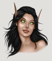 Miss Silvermoon 2010 by cryptfever
