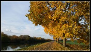 Fall in France by Toun57