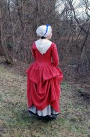 1770's Rose Gown Back II by Goldenspring