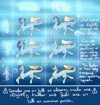 MLP SPECIE - Arciquoas [OPEN] by Galopade