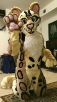 2014.08 Ozzie the Ocelot (for Spottacus by Midori) by SpottacusCheetah