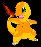 charmander by Animallover08